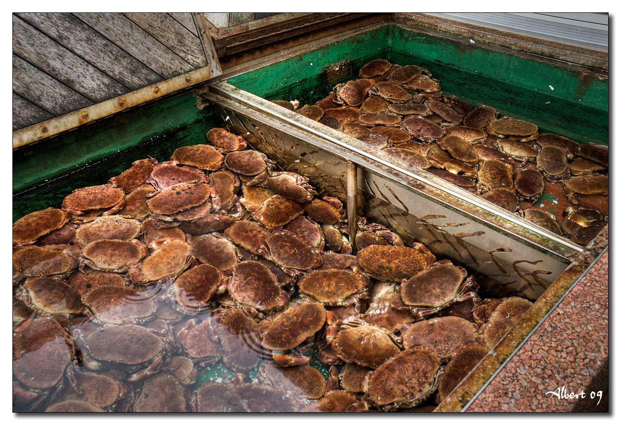 Bergen - Mercat del peix 3