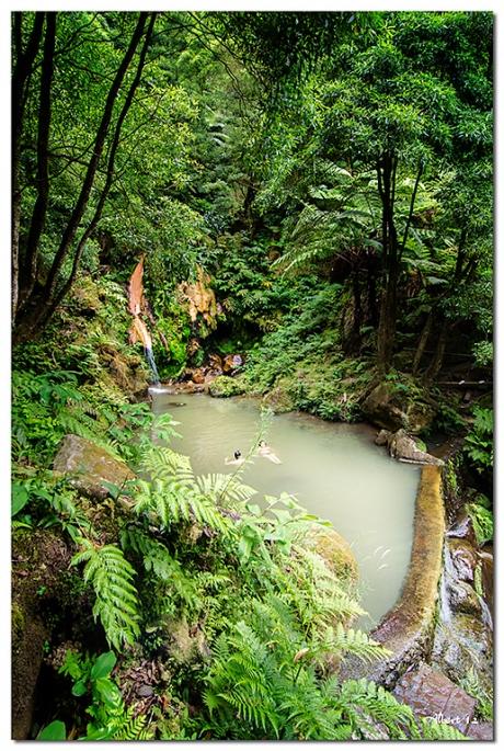 Aigua ferruginosa de la muntanya - Iron water