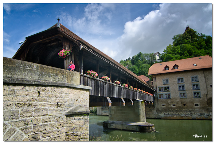 Pont de fusta