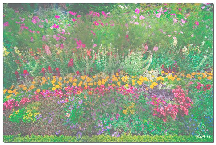Flors impressionistes