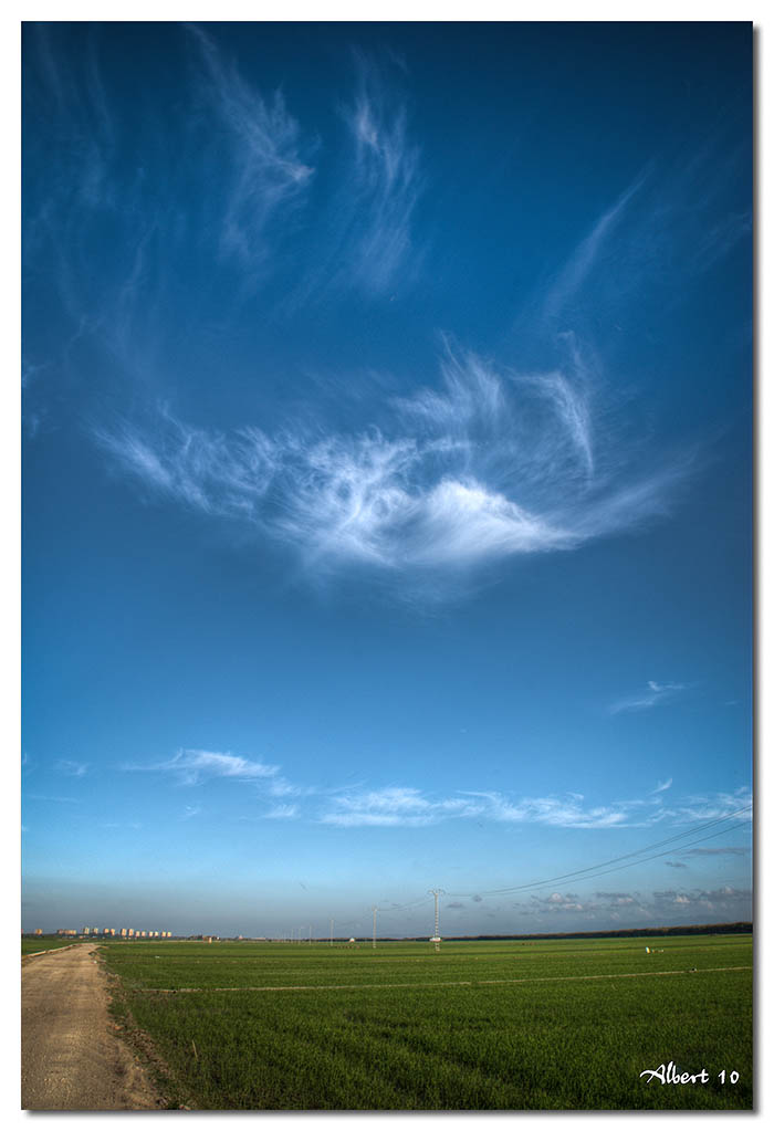 Núvol d'arròs